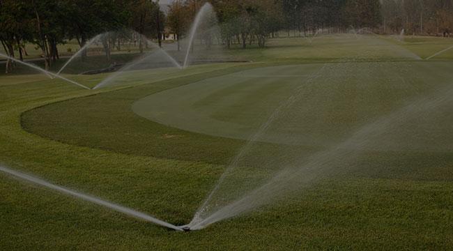 Plano Irrigation